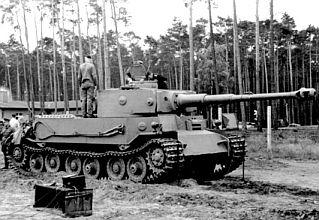 Tiger P.jpg